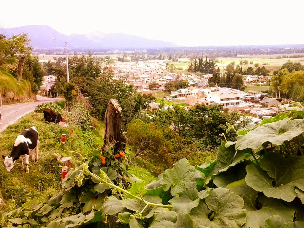 Bogotà, Colombia