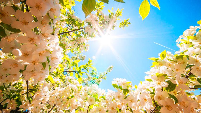 meditazione per l'equinozio di primavera