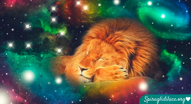 caratteristiche segno leone